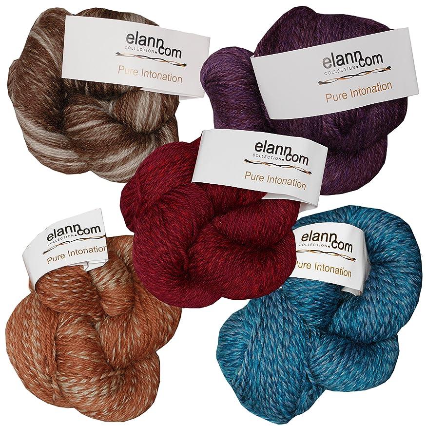 elann Pure Intonation Yarn | 5 Ball Bag | 711 Color Pack 1 (1 Each 701, 702, 704, 706, 708)