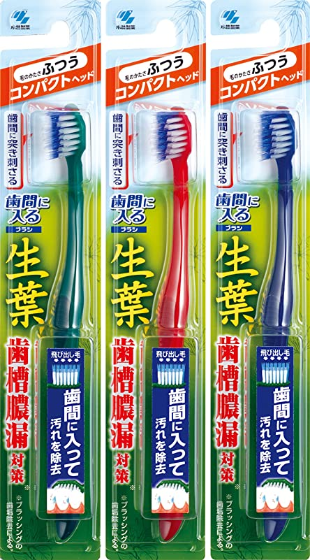 マトン敬な洞窟【まとめ買い】生葉(しょうよう)歯間に入るブラシ 歯ブラシ コンパクト ふつう×3個