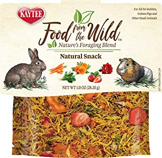 Kaytee Food from The Wild Natural Snack