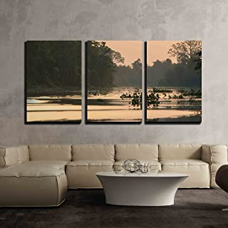 wall26 3 Piece Canvas Wall Art - Trees and Jungle on The Catatumbo River Near The Maracaibo Lake - Modern Home Decor Stretched and Framed Ready to Hang - 16