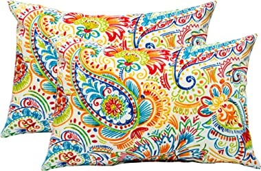 Set of 2 Indoor / Outdoor Decorative Lumbar / Rectangle Pillows - Gilford Primary Thin Line Floral Paisley