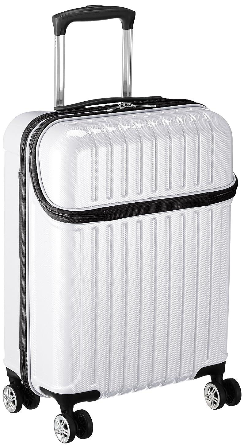 評議会自動的に面倒[アクタス] スーツケース ジッパー トップオープン トップス 74-20310 33L 53.5 cm 3.2kg