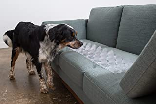 Best dog in couch Reviews