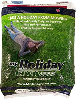 Jacklin Seed - My Holiday Lawn - 100% Kentucky Bluegrass   Low Maintenance - Low-Growing Grass - Mow As Little As Once Per Month   Certified Grass Seed (5 lbs (1,000 sq ft))