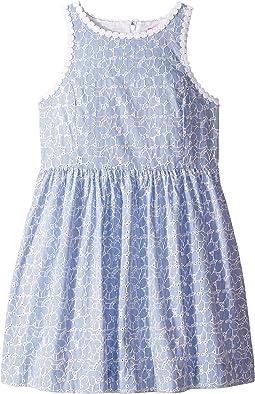 Crew Blue Tint Yarn-Dye Stripe Floral Eyelet