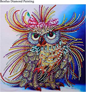 Bestlus Premium 5D Owl Diamond Painting Kits for Adults DIY Painting Art Kits by Numbers Special Shaped Rhinestones Partial Drill (10x10 inch)