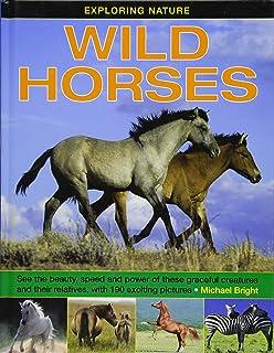 Exploring Nature: Wild Horses