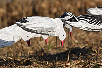 collapsible snow goose decoys