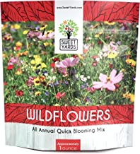 Wildflower Seeds Annual Quick Blooming Mix - Large 1 Ounce Packet Over 7,500 Open Pollinated Seeds