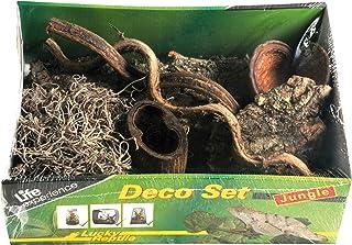 Lucky Reptile Set de decoración Life Experience para terrario Estilo Jungla
