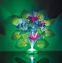 Best fiber optic bouquet Reviews