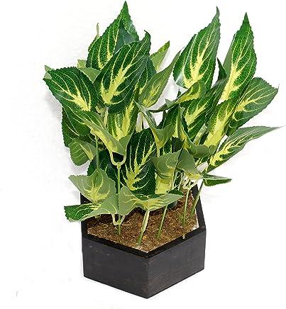 Pindia Plastic Miniature Artificial Leaf Indoor/Outdoor Plant with Wooden Hexagonal Pot (17 cm x 13 cm x 24 cm, Green)