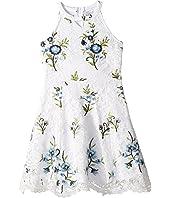 Floral Lace Dress (Big Kids)