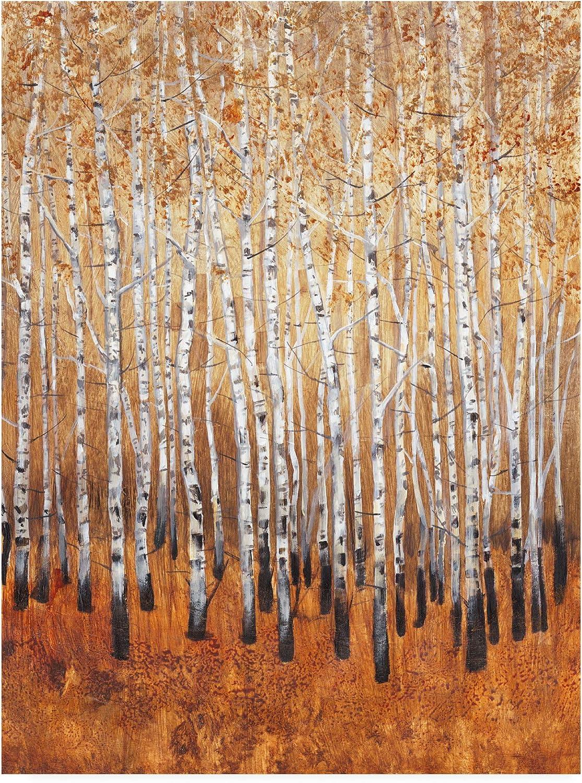 Trademark Fine Art Sienna Birches I by Tim Otoole, 14x19