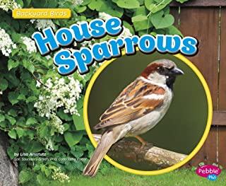 Best wild sparrow designs Reviews