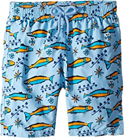 Vilebrequin Kids - Sardines À L'Huile Swim Trunk (Big Kids)