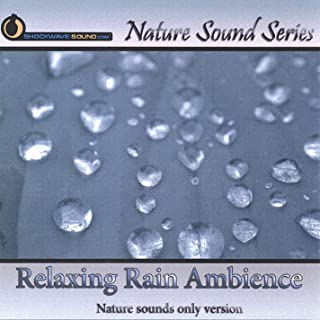 Relaxing Rain Ambience (Natural Sounds Only)