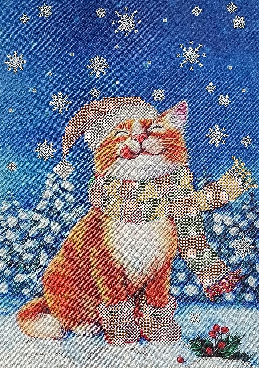 Bead Embroidery kit Christmas Cat Beaded Cross Stitch kit Needlepoint Handcraft Tapestry kit