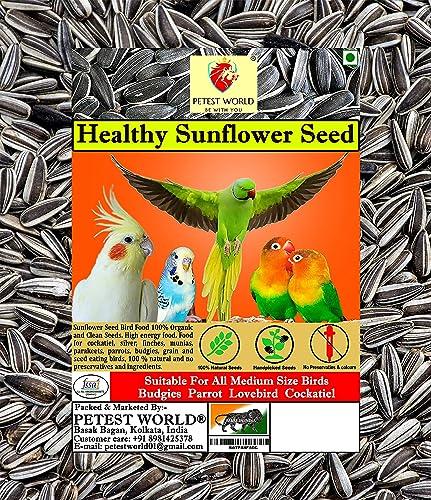 Petest World Leo Steel Healthy Sunflower Seed Bird Food (900 g)