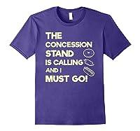 Baseball Softball Funny Sister Brother T-shirt Purple