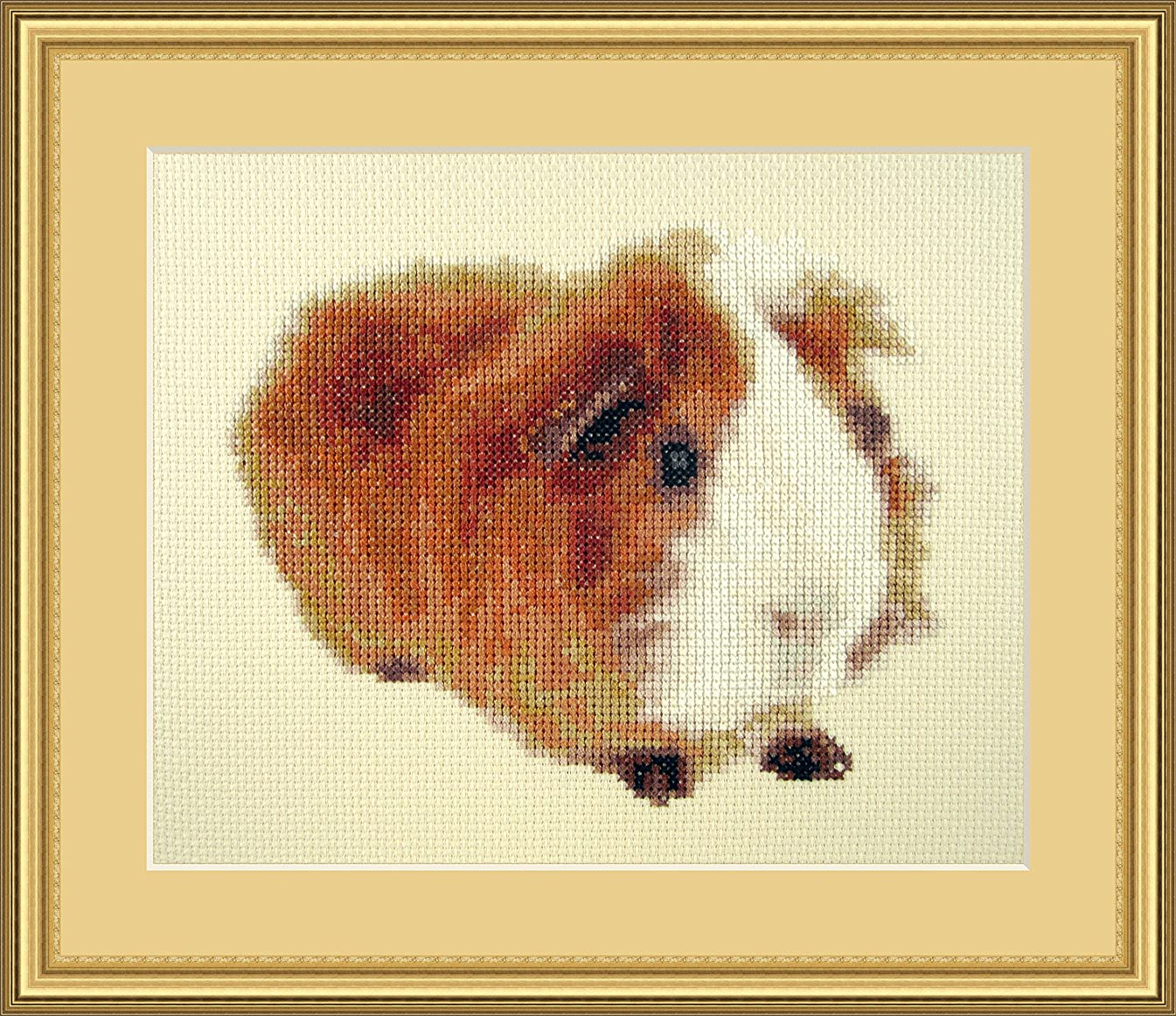 Reds have more fun Counted Cross Stitch Kit By Orcraphics