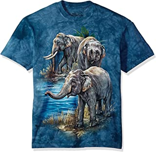 The Mountain Men's Asian Elephants