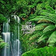 Jungle (feat. Jordan T)