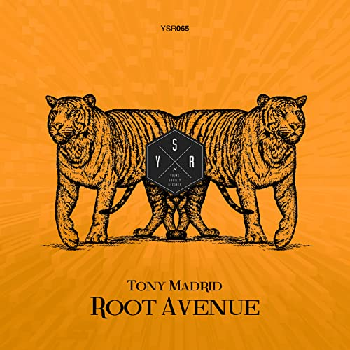 Amazon.com: Root Avenue: Tony Madrid: MP3 Downloads