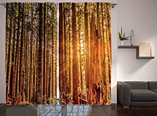 Ambesonne United States Curtains, Tall Trees Red Woods Forest Humboldt California Sequoia Picture, Living Room Bedroom Window Drapes 2 Panel Set, 108
