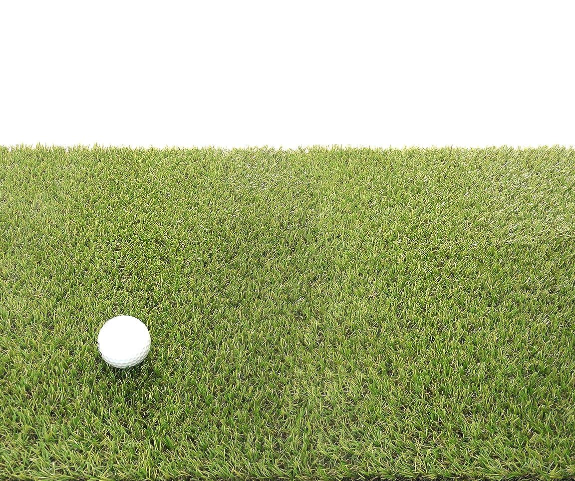 方言餌暴行天然芝にそっくり!リアル人工芝(ベント芝)15mm 幅1m×長さ5m GTF-1505