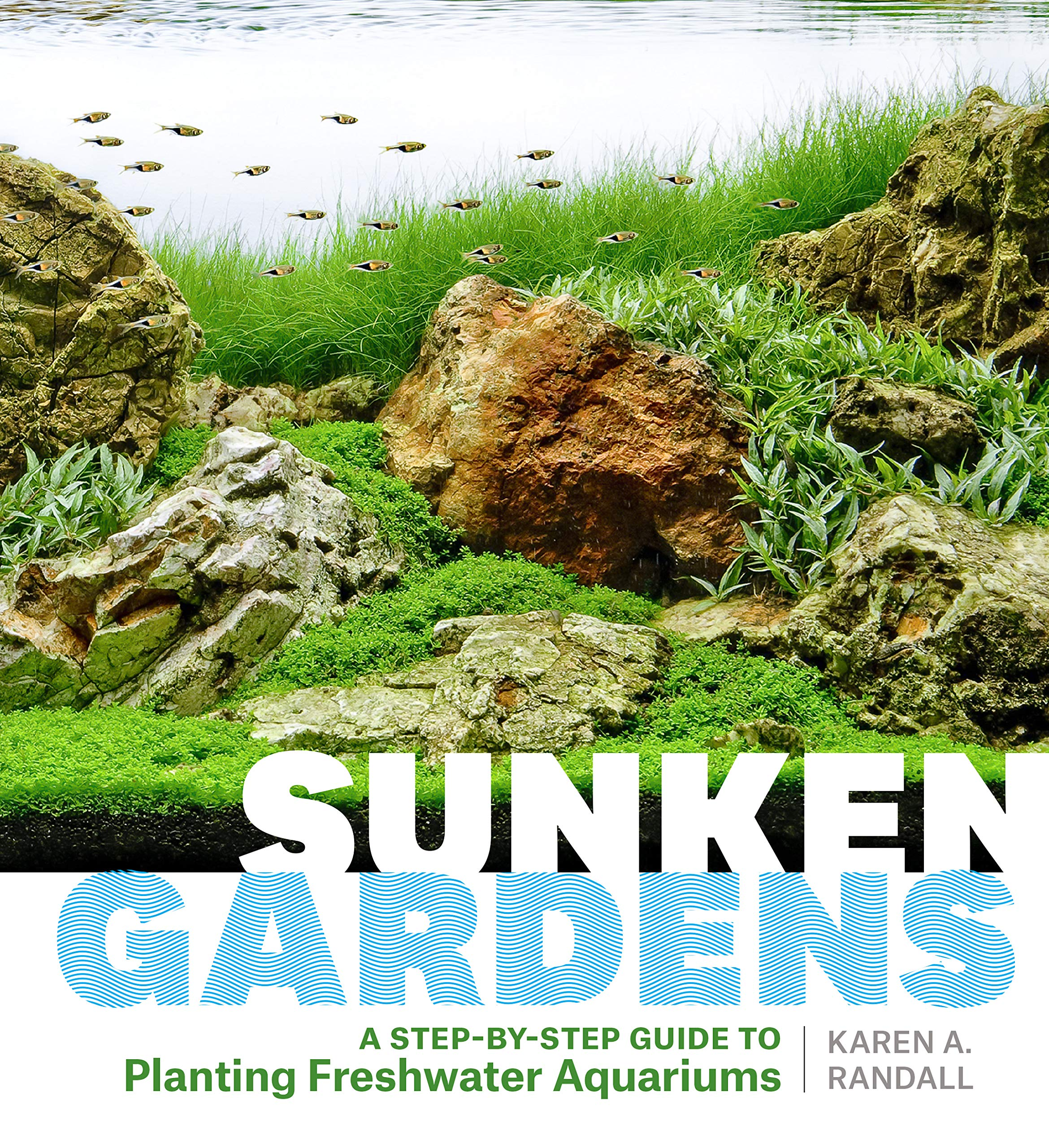 Image OfSunken Gardens: A Step-by-Step Guide To Planting Freshwater Aquariums