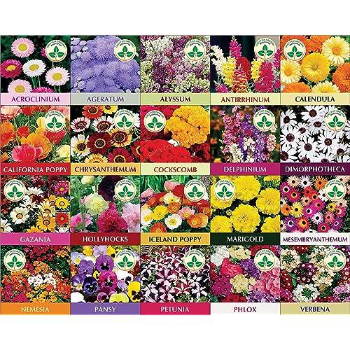 Flower Seeds: Buy Flower Seeds Online at Best Prices in