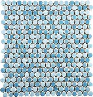 SomerTile WSHGPROC Ursa Penny Round Porcelain Wall, 11.25