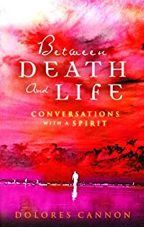 Between Death and Life – Conversations with a Spirit: An internationally acclaimed hypnotherapist's guide to past lives, g...