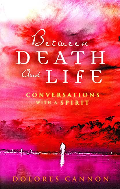 Between Death and Life – Conversations with a Spirit: An internationally acclaimed hypnotherapist's guide to past lives, guardian angels and the death experience (English Edition)