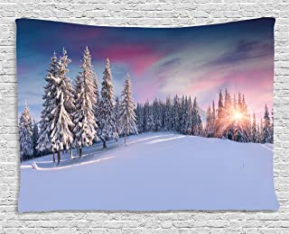 Ambesonne Winter Tapestry, Idyllic Panorama of Winter Sunrise in Snow Covered Mountains Serenity Freshness, Wide Wall Hanging for Bedroom Living Room Dorm, 80
