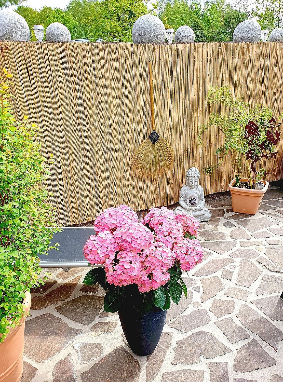 21+ Schilfrohrmatte 8x8 cm   Natur Wind und Sichtschutzmatte aus Schilfrohr  für Haus, Garten und Balkon Stock