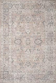 Loloi II SKY-01 Skye Collection Printed Distressed Vintage Area Rug, 2'-3