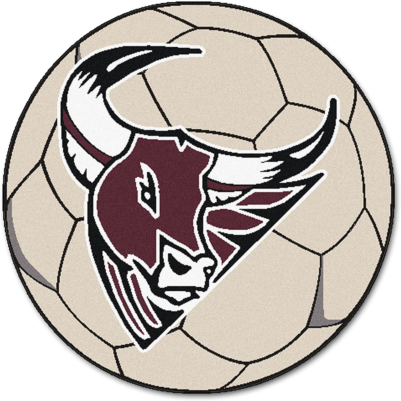FANMATS NCAA Mesa State Mavericks Nylon Face Soccer Ball Rug