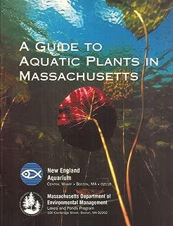 massachusetts aquatic plants