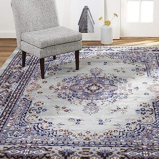 Home Dynamix Premium Sakarya Traditional Rectangle Area Rug – Oriental Silver/Blue..