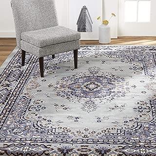 Home Dynamix Premium Sakarya Traditional Area Rug, Oriental Silver/Blue 7'8