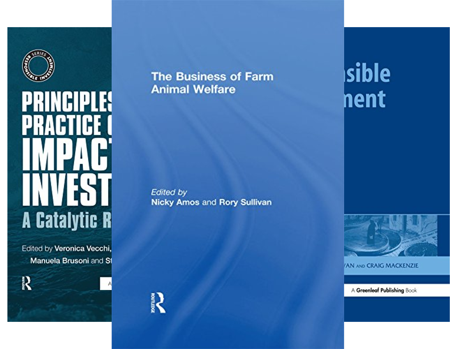 The Responsible Investment Series (7 Book Series)