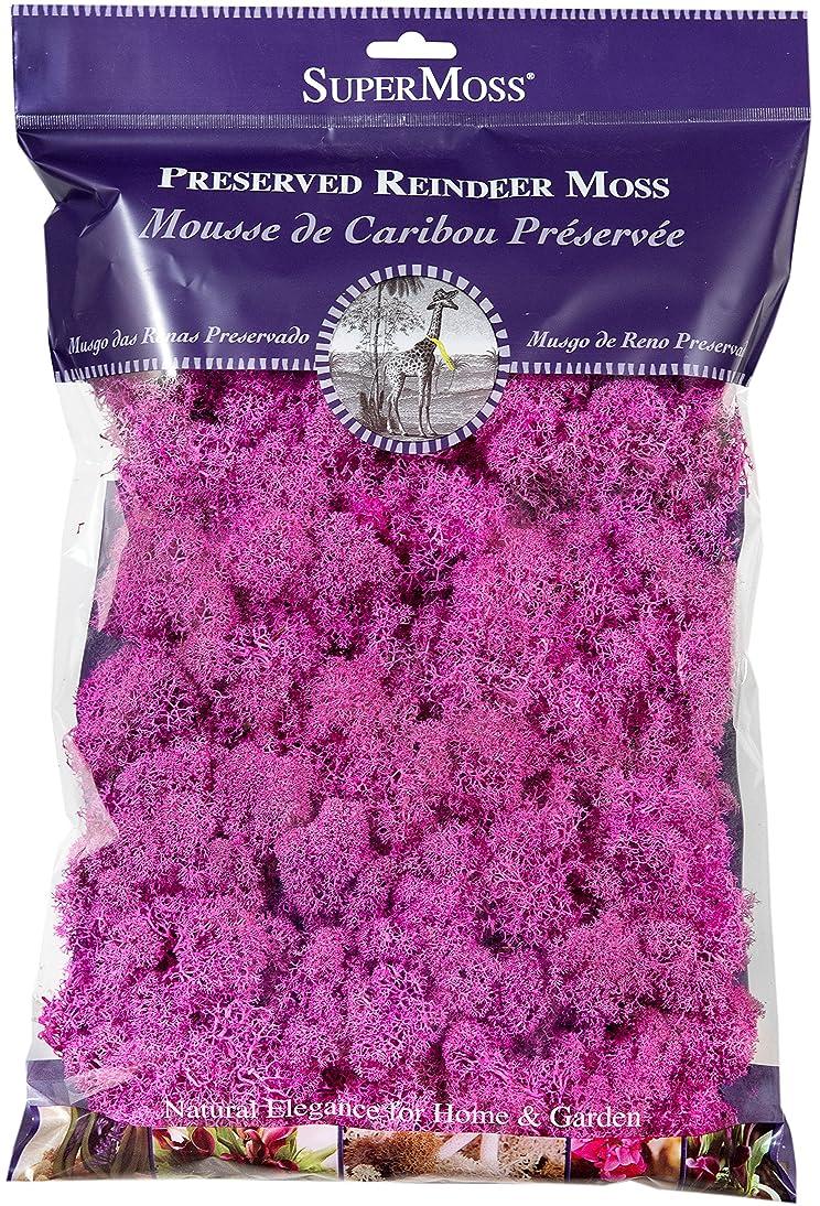SuperMoss (23199) Reindeer Moss Preserved Bag, 8oz, Pink