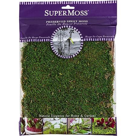 SuperMoss Preserved Sheet Moss 2oz