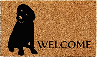 Calloway Mills 102962436 Labrador Doormat, 2' x 3', Natural/Black