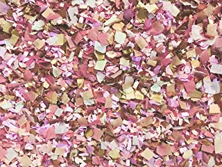 Dusty Rose Pink Peach Rose Gold Biodegradable Confetti Mix EcoFriendly Throwing Send Off InsideMyNest (25 Handfuls)