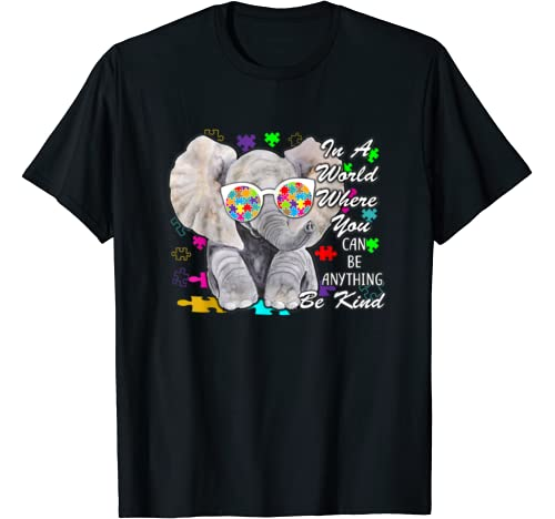 In A World Where You Can Be Anything Be Kind Autism Gift T Shirt
