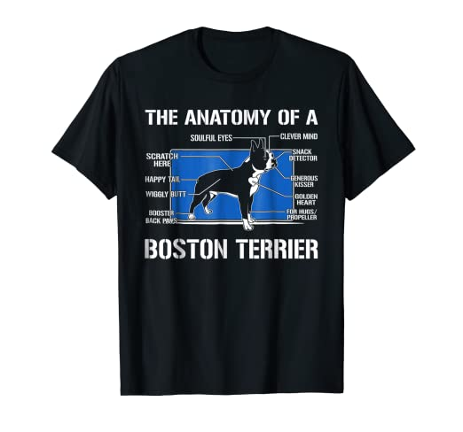 Amazon.com: The Anatomy Of A Boston Terrier T shirt: Clothing