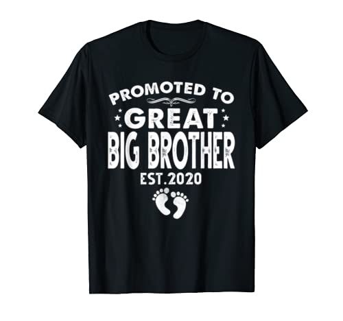 Promoted To Great Big Brother Est.2020 T Shirt Christmas Gift